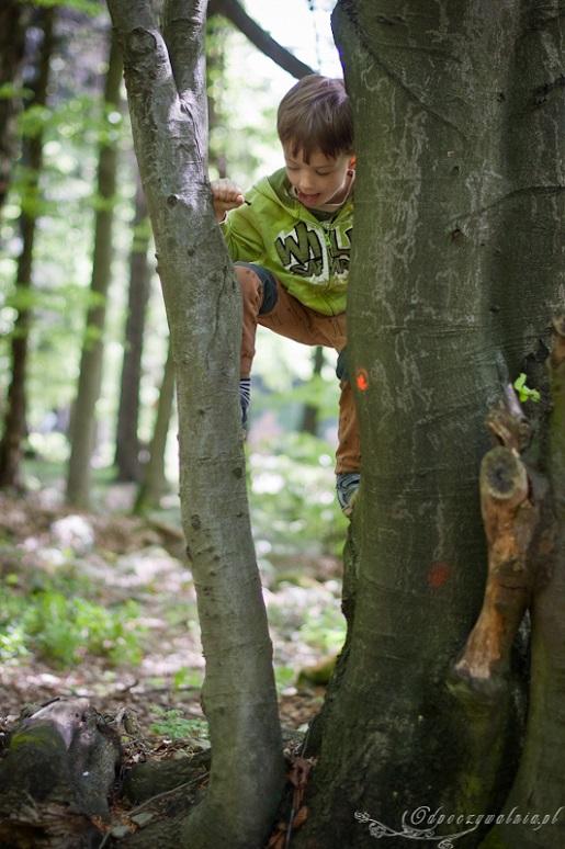 Wakacje z dziećmi Beskid Niski opinie co zobaczyć