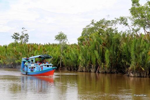 1 Tanjung Puting Borneo podróże z dzieckiem (1)