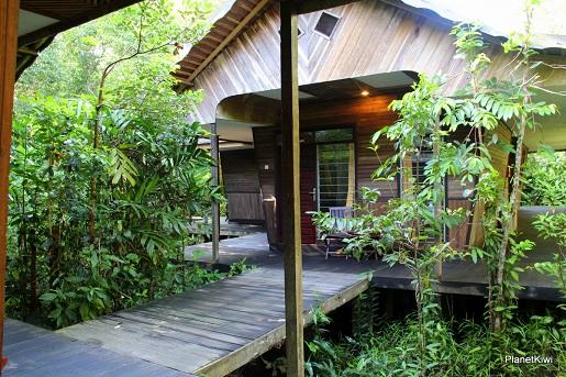 1 Tanjung Puting Borneo podróże z dzieckiem (25)