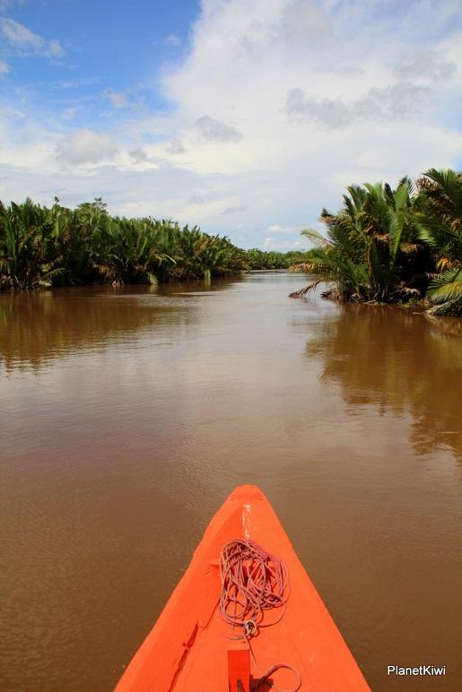 1 Tanjung Puting Borneo podróże z dzieckiem (3)