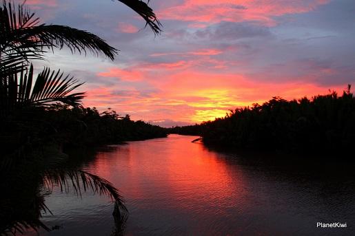 1 Tanjung Puting Borneo podróże z dzieckiem (37)