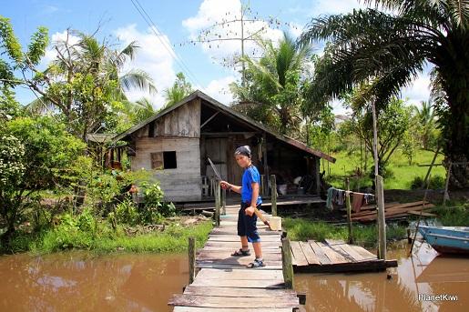 1 Tanjung Puting Borneo podróże z dzieckiem (43)