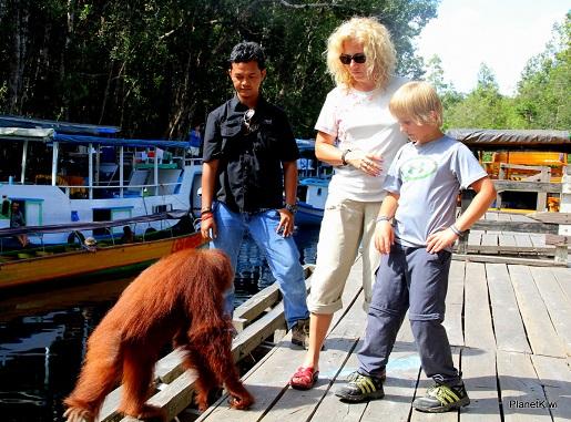 1 Tanjung Puting Borneo podróże z dzieckiem (7)
