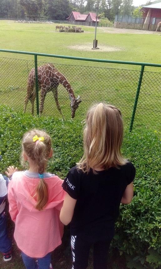 1 z wizytą w zoo (2)