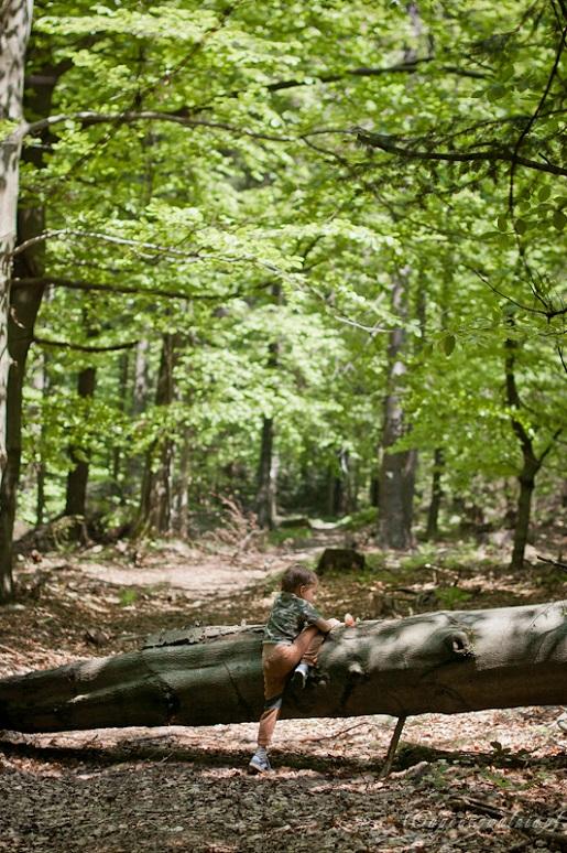 Łatwe szlaki dla dzieci Beskid Niski Góry opinie