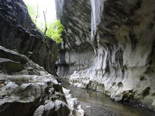 169 Rumunia Wowóz Banitei
