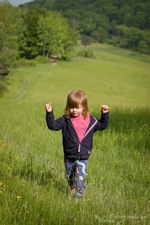 Wakacje z dzieckiem w górach -Beskid Niski
