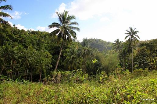 2 Siquijor Filipiny turystyka wakacje opinie (38)