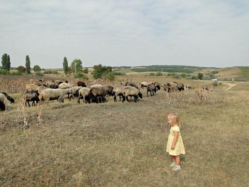 39 Mołdawia wakacje z dzieckiem opinie