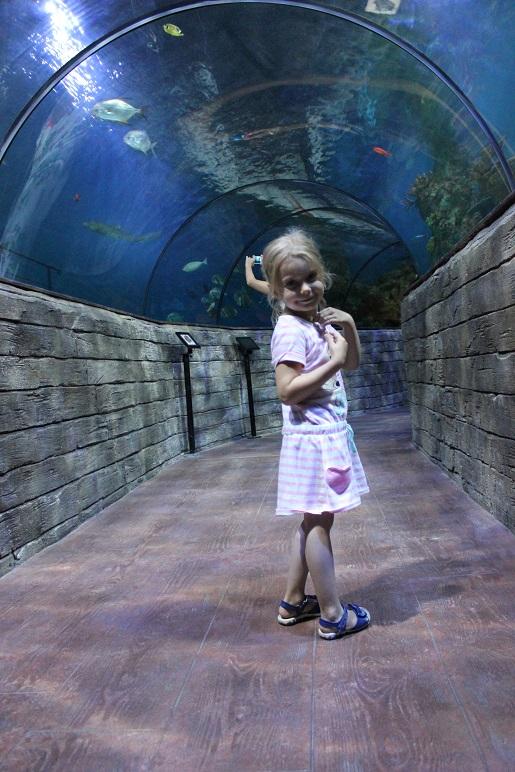 Oceanarium Malta wakacje z dzieckiem - atrakcje