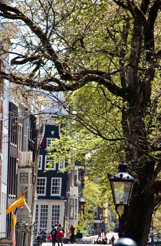 Amsterdam atrakcje - co zobaczyć - weekend z dzieckiem (4)