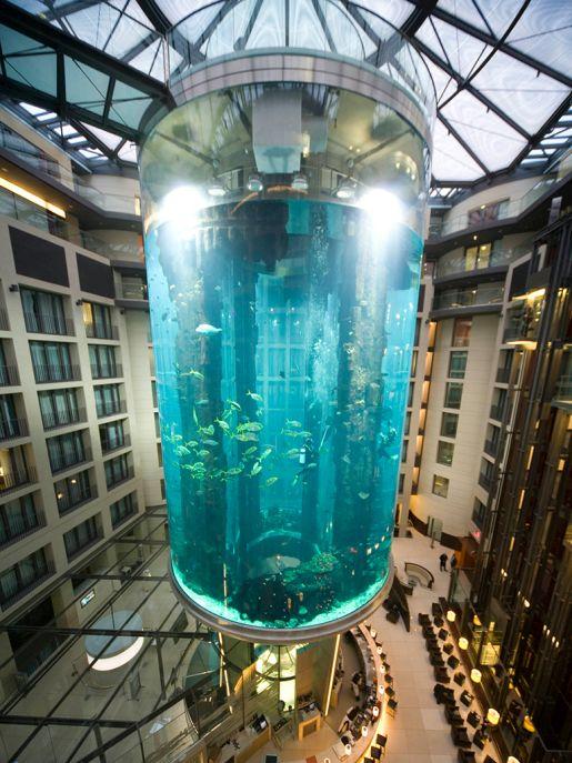 największe akwarium na świecie Berlin