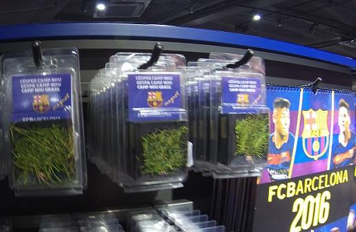 Barcelona trawa ze stadionu Camp Nou