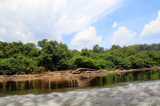 Borneo Wakacje  z dzieckiem początek 8