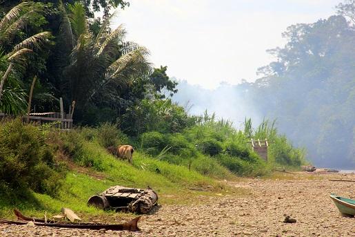 Borneo z dzieckiem  wakacje