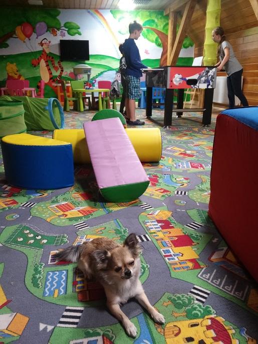 Hotel Podklasztorze przyjazny dzieciom opinie (1)