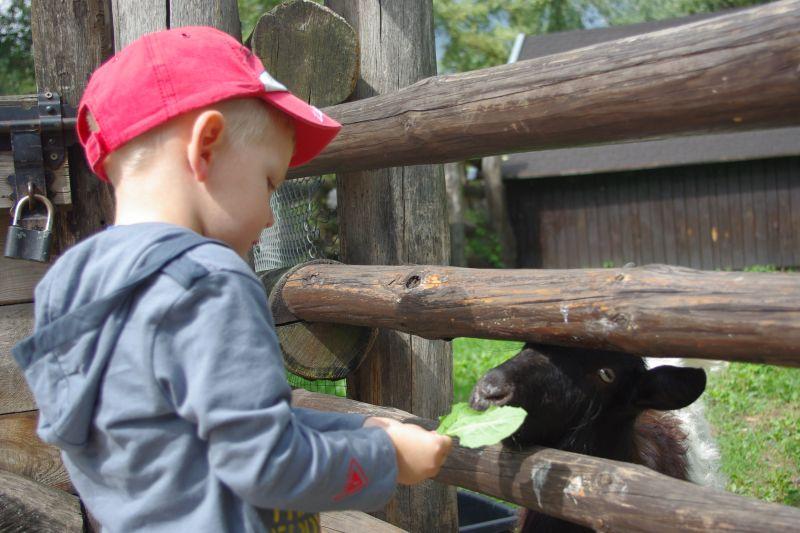 zoo Warszawa z dzieckiem