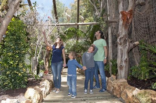 Jungle Park Arona atrakcje gdzie z dzieckiem