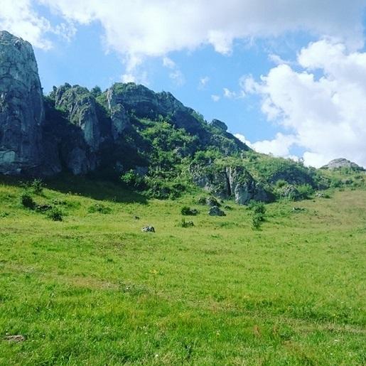 Jura Krakowsko – Częstochowska- Ścieżka geologiczna Kamieniołom Kielniki (5)