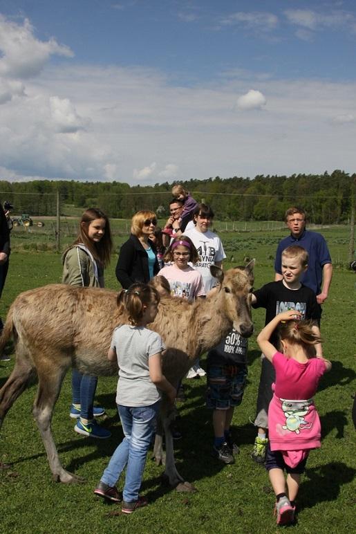 KADZIDLOWO atrakcje dla dzieci Mazury