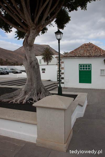 Lanzarote atrakcje pogoda zimą luty opinie