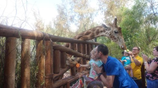 Oasis Park Fuerteventura opinie atrakcje