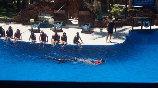 Oasis Park atrakcje Fuerteventura Hiszpania