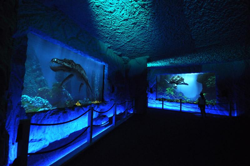 atrakcje dla dzieci park dinozaurów