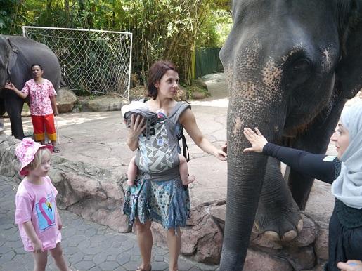 Tajlandia Bangkok atrakcje dla dzieci Safari World opinie
