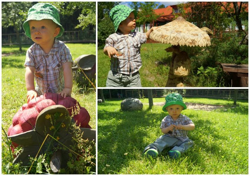 Turtul Suwalszczyzna z małym dzieckiem atrakcje