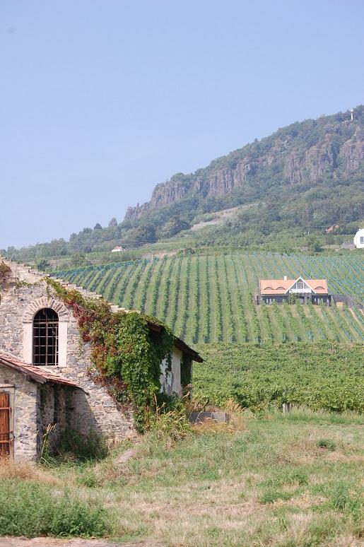 Węgry nad Balatonem -krajobraz atrakcje