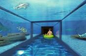 aquapark z rekinami nad morzem reda 1