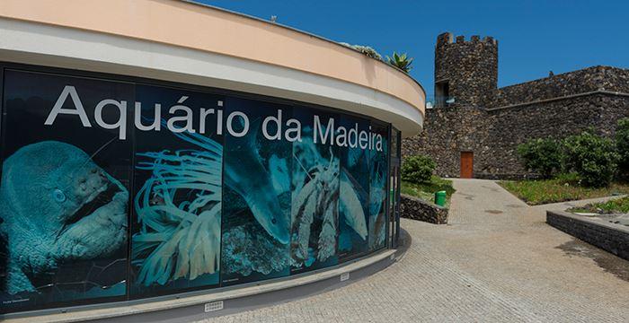 Madera atrakcje dla dzieci Portugalia
