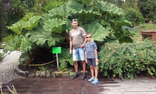 Arboretum Balestraszyce rodzinne atrakcje