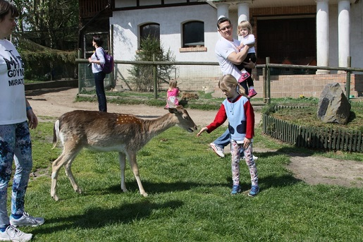 atrakcje Mazury park dzikich zwierzat