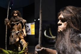 rodzinne atrakcje centrum neandertalczyka
