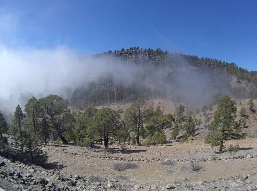samochodem w chmury - dojazd na Teide opinie
