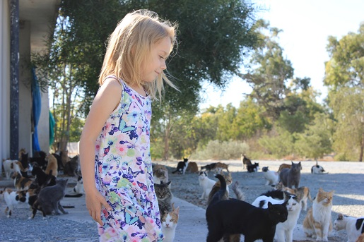 wakacje z dzieckiem Cypr opinie