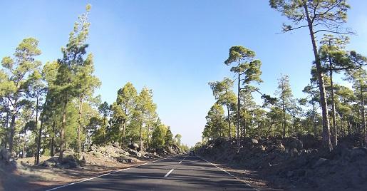 wycieczka na Teide z dzieckiem opinie