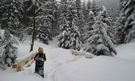 Dolina Małej Łąki atrakcje dla dzieci Tatry
