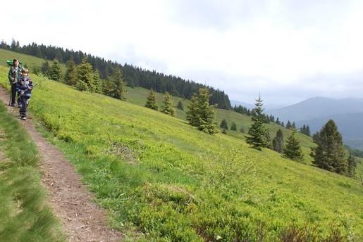 dzień dziecka na szlaku góry z dzieckiem (7)