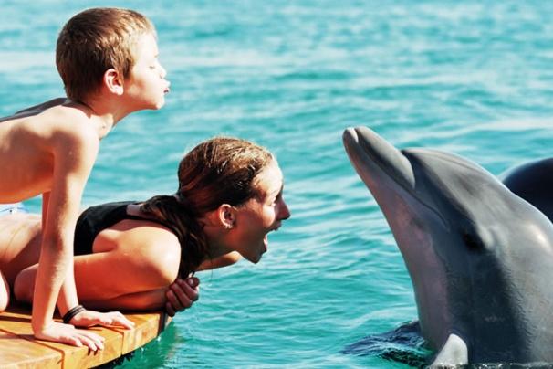 wakacje z dziećmi atrakcje Ejlat opinie