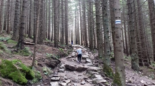 góry z dzieckiem wakacje 2017 szlaki 2017
