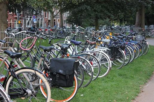 Groningen z dzieckiem Holandia opinie
