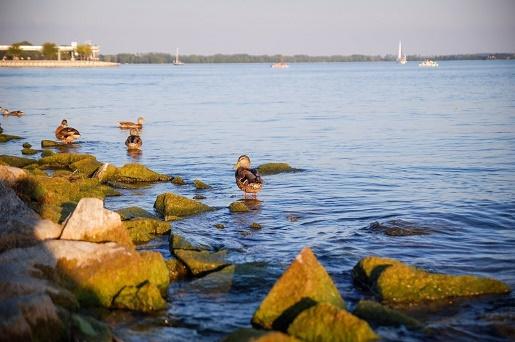 jezioro niegocin mazury z dzieckiem