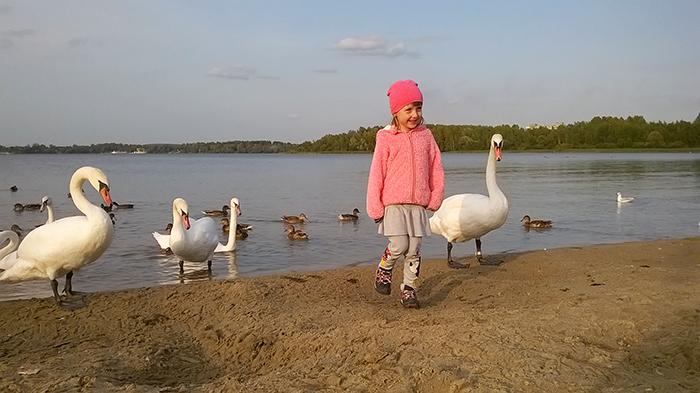 Pogoria Dąbrowa Górnicza opinie atrakcje