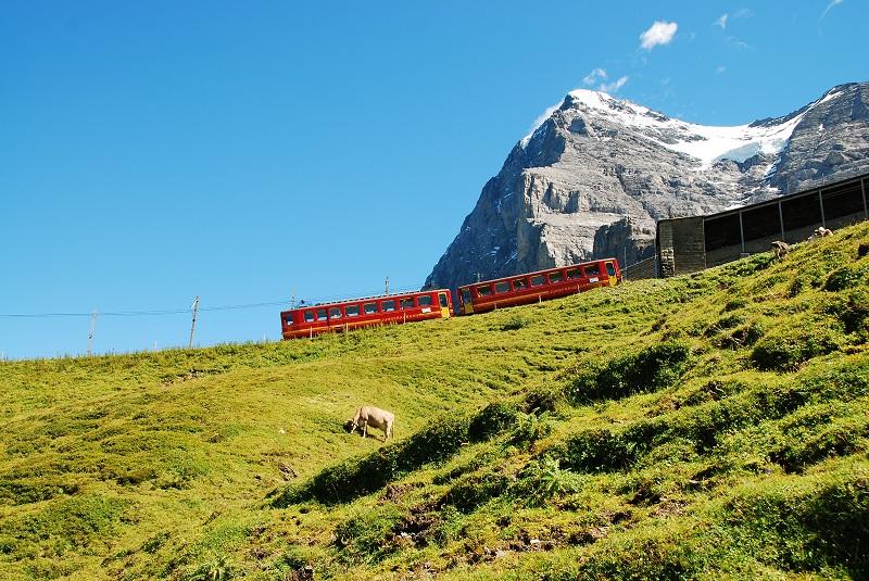 Przełęcz Jungfraujoch Szwajcaria opinie atrakcje