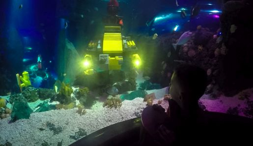 Legoland niemcy opinie Atlantis by Sea Life