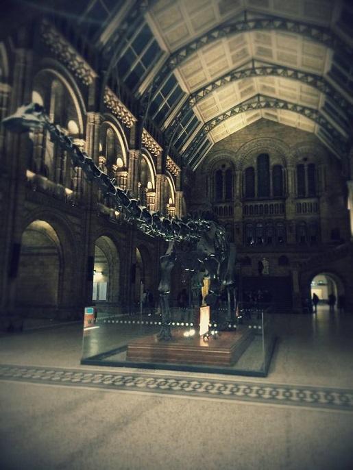zwiedzanie z dzieckiem Muzeum Historii Naturalnej w Londynie
