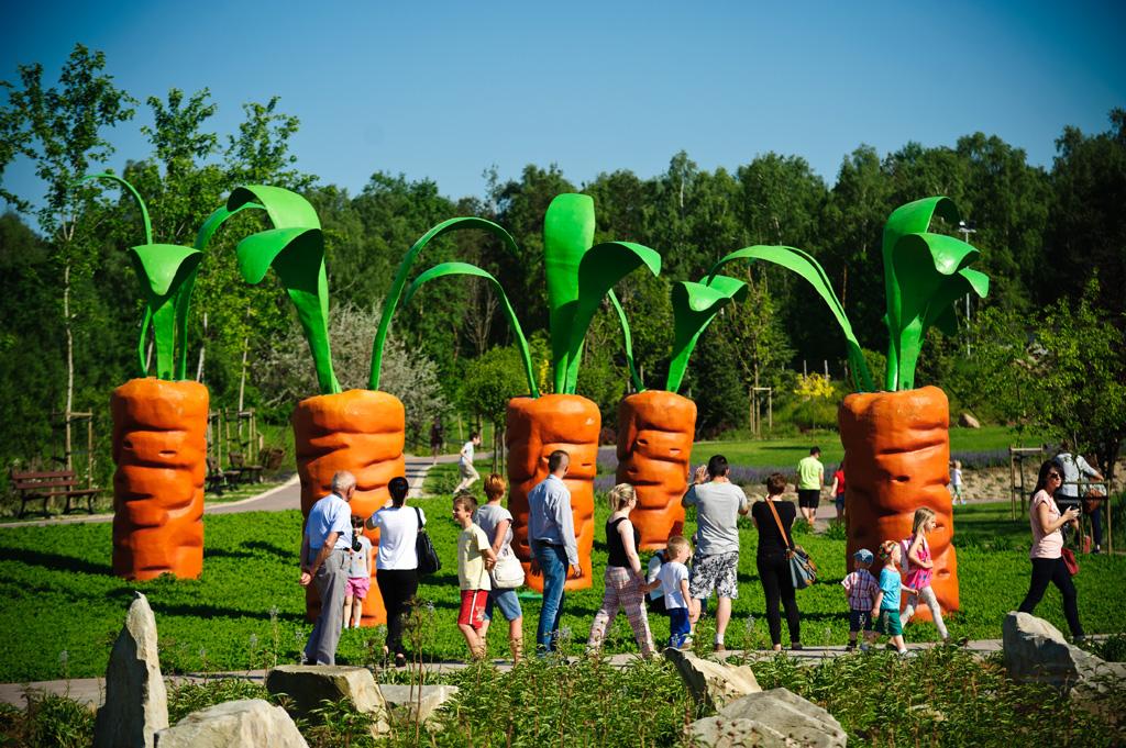 atrakcje dla dzieci Puławy
